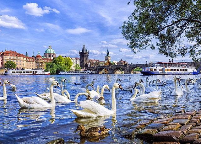 Plus Prague, Praha - save 64%