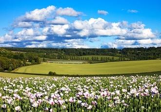 Amersham, Buckinghamshire